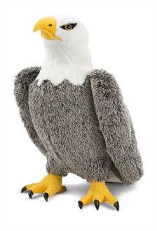 Picture of Bald Eagle Plush