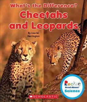 Picture of CHEETAHS AND LEOPARDS