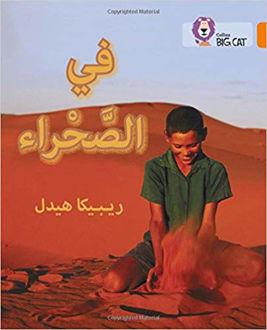 في الصحراء