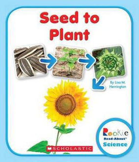 Picture of Seed to Plant