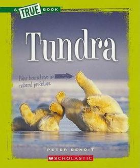 Picture of A True Book Tundra