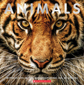 Picture of Animals : Witness life in the Wild featuring 100s of Species