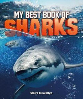 Picture of My Best Book of Sharks