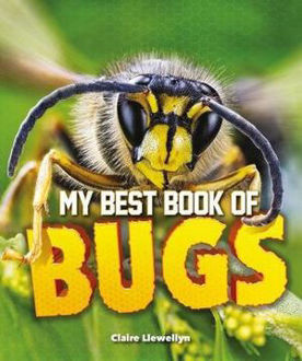 Picture of My Best Book of Bugs