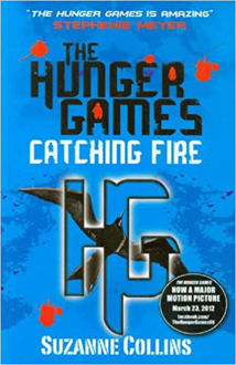 Picture of The Hunger Games Catching Fire