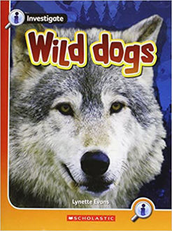 Picture of Investigate :Wild Dogs
