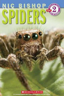 Picture of Spiders Scholastic Readers : Level 2