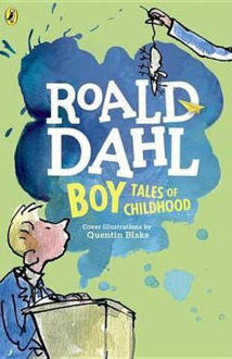 Picture of Boy Tales of Childhood