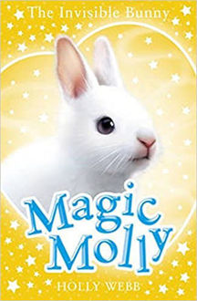 Picture of The Invisible Bunny Magic Molly