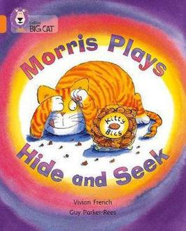 Picture of Morris Plays Hide and Seek