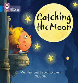 Picture of Catching the Moon
