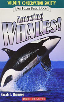 Picture of AMAZING WHALES