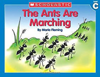 Picture of The Ants are marching