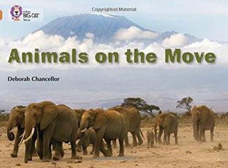 Picture of Animals on the Move