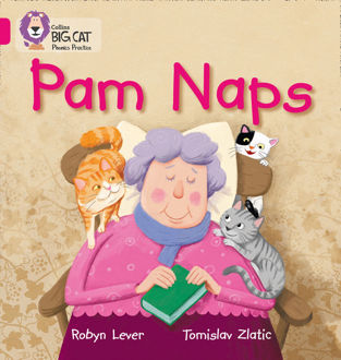 Picture of Pam Naps Big Cat Pink A Band 1 A