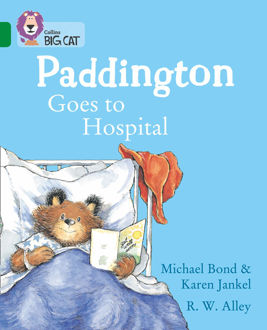 Picture of PADDINGTON HOSPITAL/ Big Cat