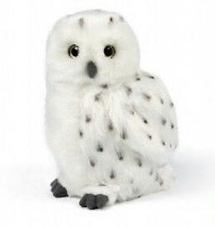 Picture of Snowy Owl Medium
