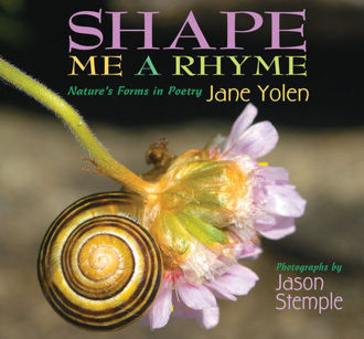 Picture of Shape Me A Rhyme