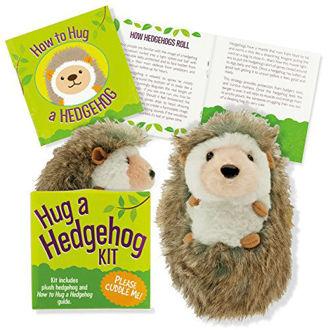 Picture of Hug a Hedgehog Kit