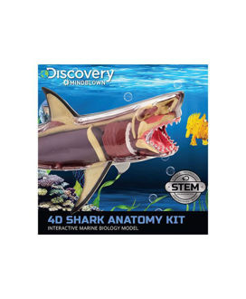 Picture of Discovery Mindblown: 4D Shark Anatomy Kit