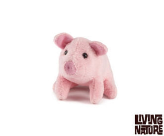 Picture of Living Nature Pig Mini Buddies