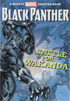 Picture of BLACK PANTHER| THE BATTLE FOR WAKANDA