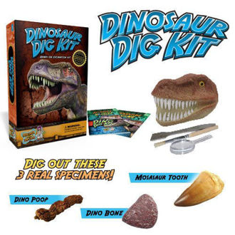 Picture of Dinosaur Dig Kit