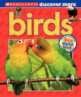Picture of Birds