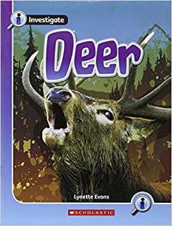 Picture of Deer Animal Defenses