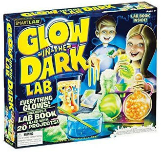 Picture of Glow in the Dark Lab 20 Enlightening Science Experiments