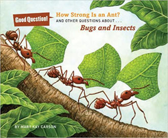 Picture of How Strong Is an Ant?: And Other Questions About Bugs and Insects (PAPERBACK)