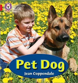 Picture of Pet Dog (Collins Big Cat Phonics) Paperback