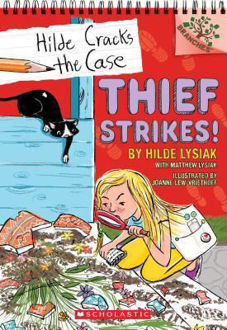 Picture of Thief Strikes!