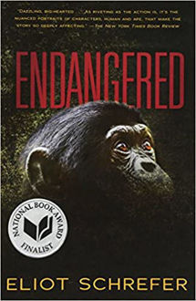 Picture of ENDANGERED